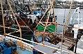 Trawlers at Ardglass (4) - geograph.org.uk - 627322.jpg