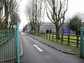 Tree-lined entrance to Whitchurch High School, Cardiff - geograph.org.uk - 1725280.jpg