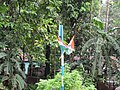 Trinamool Congress flags fly in a post.jpg