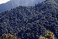 Trongsa-22-Landschaft-2015-gje.jpg