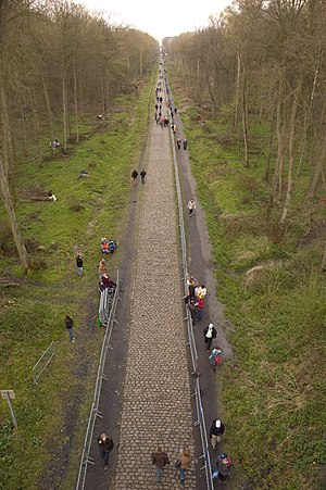 Trouée d'Arenberg - The straight cobbled road in the Forest of Arenberg in 2008 Paris–Roubaix