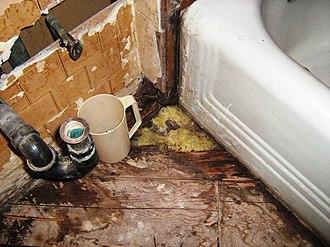 Shower splash guard - Image: Tub Floor Damage