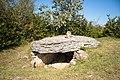 Tumulus-dolmens du Mont-de-Senne.jpg