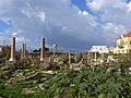 Tyre ancient town 2018 - 05.jpg
