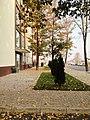 USHT (Autumn) (2).JPG