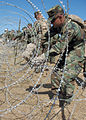 US Navy 081014-N-1205P-121 Chiefs and officers assigned to Naval Mobile Construction Battalion (NMCB) 5 practice setting up a triple-strand concertina wire fence during the NMCB-5 annual Khaki field exercise.jpg