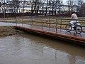 Uberschwemmung in der Flutmulde (3525561522).jpg