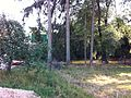Umgebung der Fils nahe Süßen - panoramio.jpg