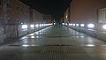 Unical - Ponte Pietro Bucci, notte.jpg