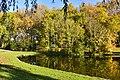 Végétation aux étangs de Dirkbeek (22282938843).jpg