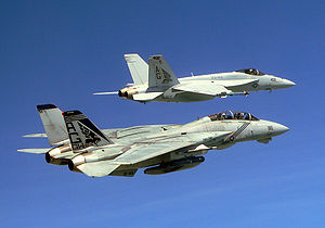 "Boeing F/A-18E/F Super Hornet - VFA-143 ""Pukin Dogs"" F-14B and F/A-18E in 2005"