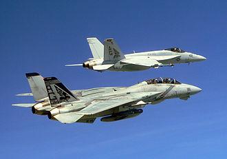"Boeing F/A-18E/F Super Hornet - VFA-143 ""Pukin Dogs"" F-14B and F/A-18E in 2005"