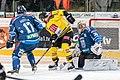 Vienna Capitals vs Fehervar AV19 -110.jpg