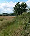 View into South Nottinghamshire - geograph.org.uk - 905827.jpg