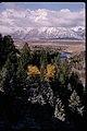 Views at Grand Teton National Park, Wyoming (bf832f8c-26f0-46cf-966f-ca7d5959b39b).jpg