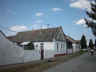 Vinkovački Banovci Village in Syrmia, Croatia
