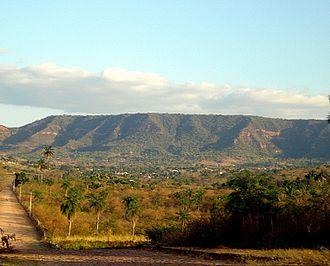 Araripe manakin - Chapada do Araripe is the only known locality
