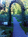 Warszawski Ogród Botaniczny – 13.jpg