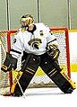 Waterloo Warriors white goalie 2014.jpg