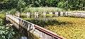 Waterloopbos. Onderzoek afsluiting van zeegaten Deltawerken M995 16.jpg