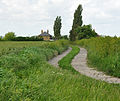 Watling Street at Richborough Castle.jpg