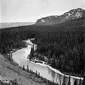 Watson River near Carcross, Yukon (17175551528).jpg