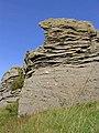 Weathered rocks at Carlin Tooth - geograph.org.uk - 543480.jpg