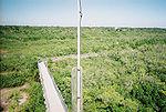 Weeden Island02.jpg