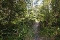 Whites Hill Reserve (7126364711).jpg