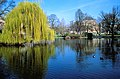 Wiesbaden-warmer-damm.jpg