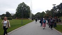 Wikimania 2019 Day 01 - Going to Aula Magna 06.jpg