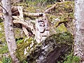 Wood sculpture in Weem Wood - geograph.org.uk - 445256.jpg