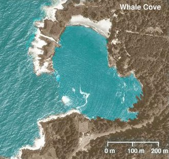 Whale Cove (Oregon) - Whale Cove, south of Depoe Bay, Oregon, colorized aerial photograph