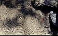 Zen (15856341997).jpg