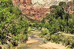 Zion National Park - Utah (15629907261).jpg