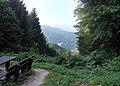 Zollstock, Blick aufs Heidelberger Schloss - panoramio.jpg