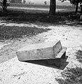 """""""Paj"""" (panj) za čebele, Brinje 1961.jpg"""