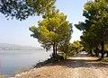 Λίμνη Καϊάφα, Νομός Ηλείας (28).jpg