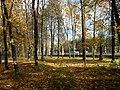 "Вид из парка ""Швейцария"" на проспект Гагарина.JPG"