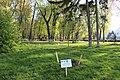 Маріїнський парк (Радянський парк) IMG 5447.jpg