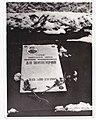 Надгробная плита на могиле во Львове на Холме Славы.jpg