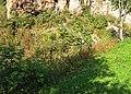 Орешек. Водяной ров перед Нумерной казармой.jpg