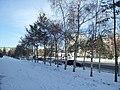 Павлодар - panoramio (1).jpg