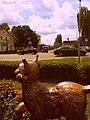 Погляд рысі на вуліцу ... Lynx look to the street ... - panoramio.jpg