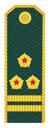Полковник таможеной службы РФ.png