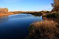 Река Урал вверх по течению - panoramio (4).jpg