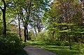 Сирецький дендрологічний парк, Київ 007.jpg