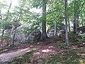 Скельно-печерний комплекс біля с.Бубнище, Поляницький регіональний парк (2).jpg