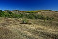 Холмы с южной стороны трассы - panoramio.jpg