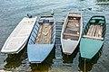 Чамци на Дунаву.jpg